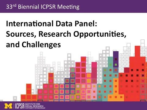 International Data Panel: Sources, Research Opportunities, and Challenges