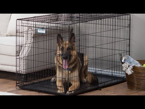 German Shepherds –  Fun Facts and Crate Size