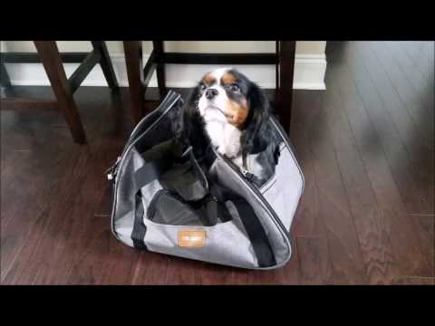 Fur Caddy  Small Pet Carrier Review