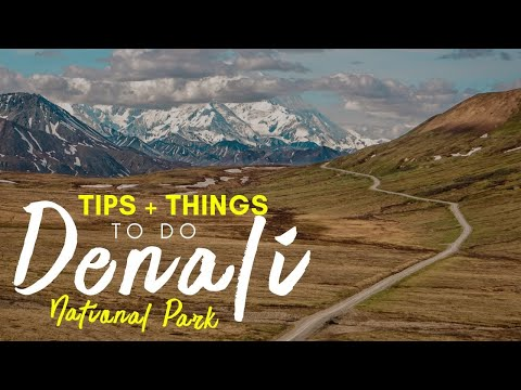 Denali National Park (ALASKA) // Tips for Visiting + Things To Do